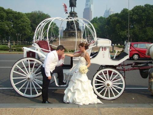 Wedding Cars & Guest Transport